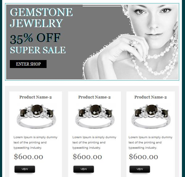 E Commerce Email Template Design To Augment Email Campaign Email